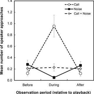 (PDF) Anthropogenic noise reduces approach of Black-capped