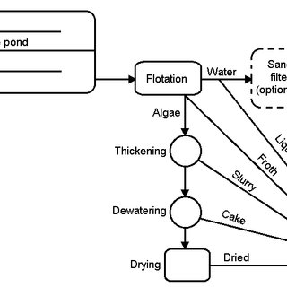 (PDF) Relationship of Algae to Water Pollution and Waste