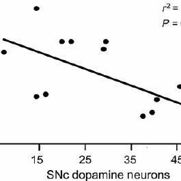 Putative neural circuitry for SNc DA regulation of sleep