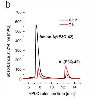 (PDF) Purification and Characterization of Recombinant N