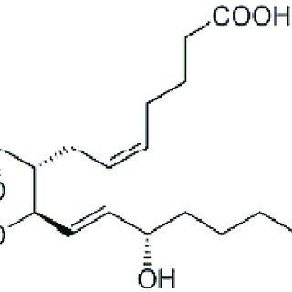 Abbildung 2: Schema zur toxinvermittelten Porenbildung an