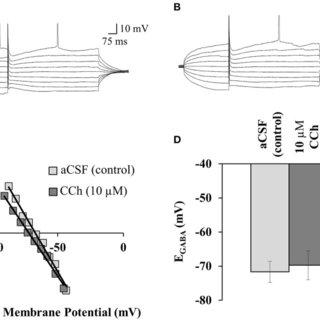 (PDF) Muscarinic acetylcholine receptor activation