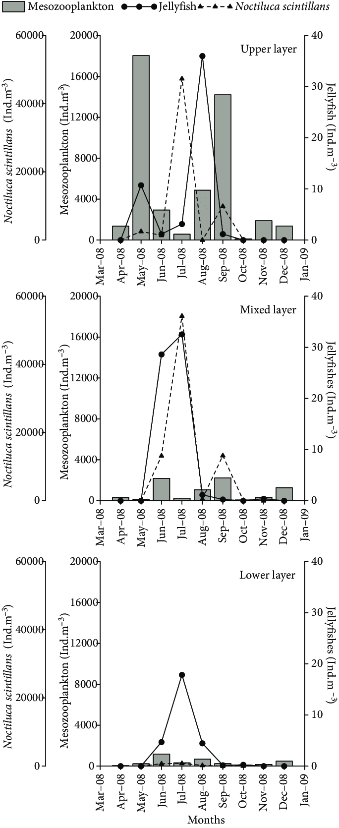 hight resolution of fluctuations in total abundance of mesozooplankton noctiluca scintillans and jellyfish in the upper mixed