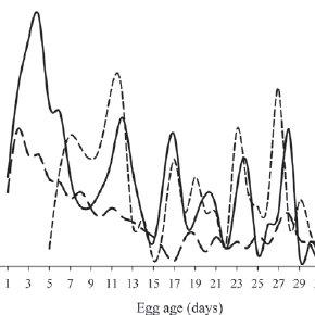 Temperature ranges of Magellanic Penguins throughout the