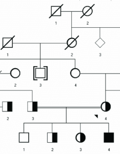 Pedigree chart for family with five generations also download rh researchgate