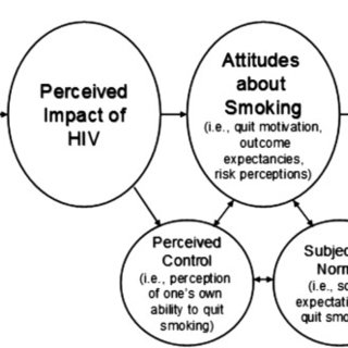Conceptual framework for the association between HIV