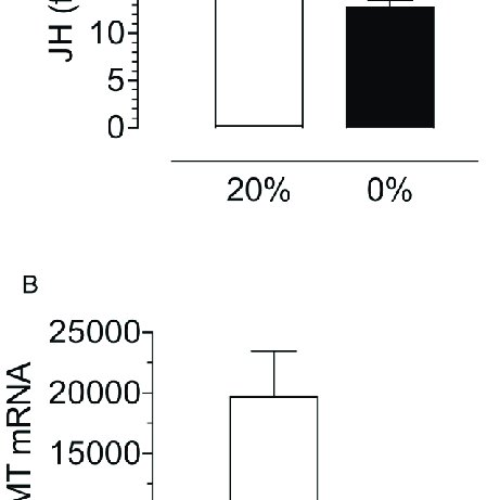 Effects of dsRNA treatment on INSr and FOXO transcript