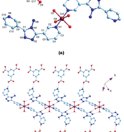 a molecular structure of 1c with atom labeling of the asymmetric unit  [ 850 x 1305 Pixel ]