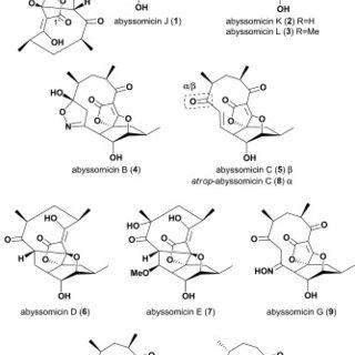 Scheme 2. Oxidative activation of the prodrug abyssomicin