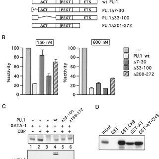 EKLF represses the transcriptional activity of FLI-1. COS