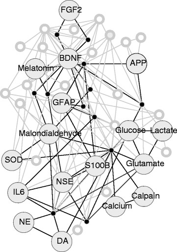 Visualization of interaction network of TBI substances