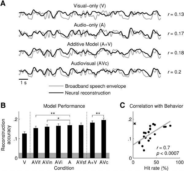 Reconstruction of the speech envelope from EEG. A