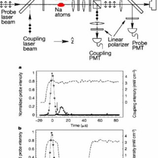 Transmission spectrum through an EIT medium: top