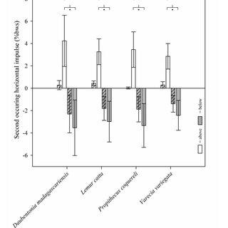 Mammalian phylogeny (adapted from Springer et al., 2004