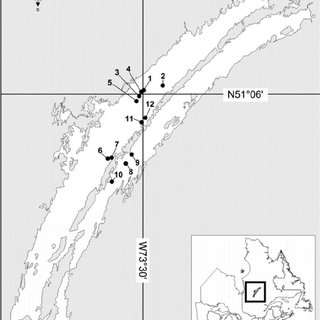 Figure 1 s ling locations for humper and lean lake trout in three depth strata