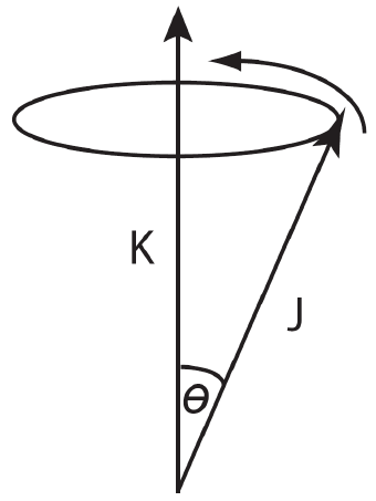 Abdomen Diagram Male Male Testicular Diagram Wiring