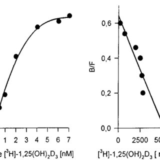 Time-dependent effect of PTH on LPL activity in 3T3-L1