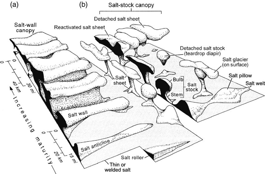 Block diagram showing schematic shapes of salt structures
