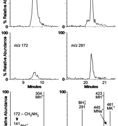 detection of nucleosides in m maripaludis trna a download scientific diagram [ 850 x 1239 Pixel ]