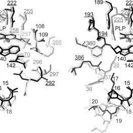 (PDF) Molecular function prediction for a family