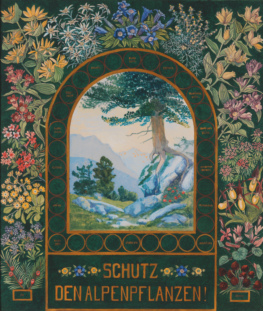 hight resolution of protect alpine flora poster by gustav jahn 1910 alpenvereinsmuseum innsbruck