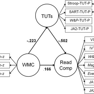 (PDF) Why Does Working Memory Capacity Predict Variation