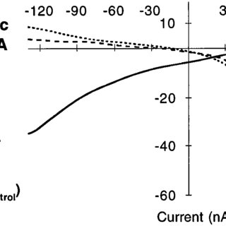Pharmacokinetic profiles of sustained-release