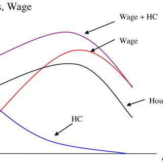 The Piecewise Linear Budget Constraint Created by