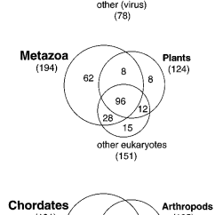 Eubacteria And Archaebacteria Venn Diagram Photosynthesis Cellular Respiration Diagrams Showing The Number Of Folds In Each Group Organisms Download Scientific