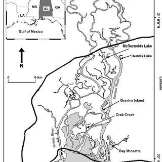 River Delta Diagram River Deltas In Texas Wiring Diagram