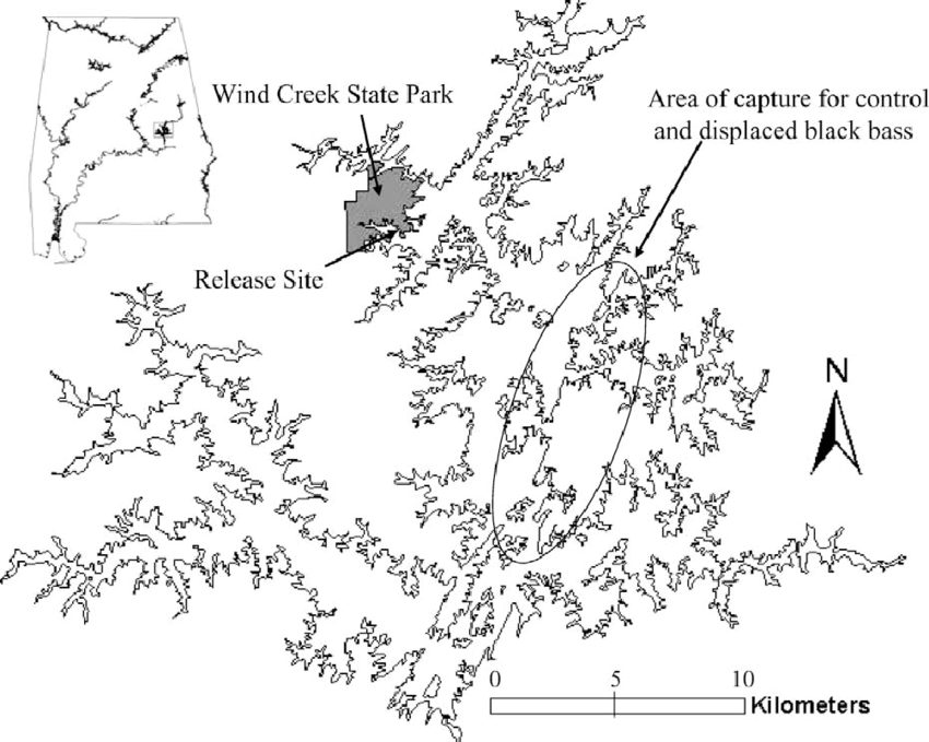 -Map of Lake Martin, Alabama, showing the study area near