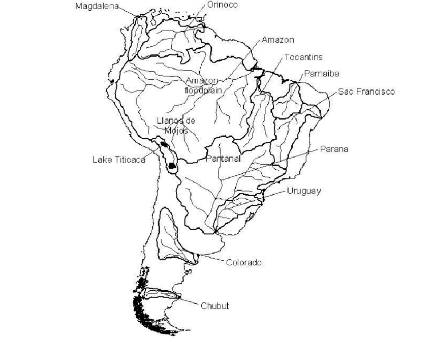 1 South America's major river basins and wetlands