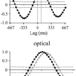 Measurement of the rostrocaudal spread of electrical and