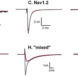 Human and rat Nav1.x pharmacology of ProTX-II and