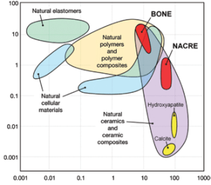 Ashby plot paring toughness and modulus Bone and nacre