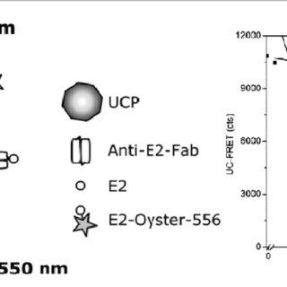 (Left) Scheme of an inner filter-effect-based UC oxygen