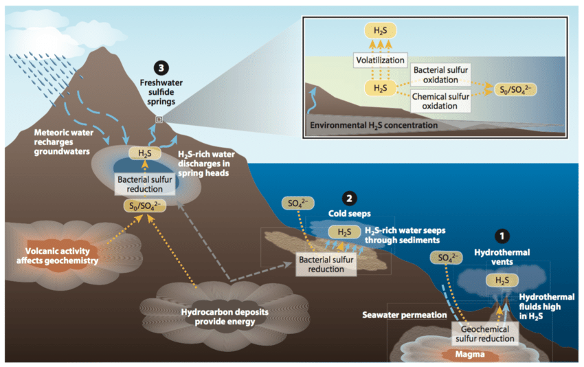 Overview of environmental sources and fate of hydrogen