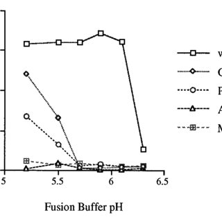 pH dependence of G protein membrane fusion activity. HeLa