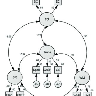 (PDF) Executive functioning and psychopathology in