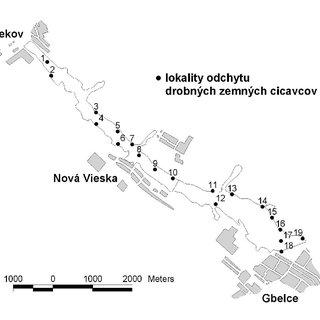 (PDF) Drobné zemné cicavce (Insectivora, Rodentia).