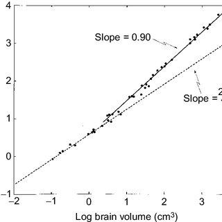 (PDF) Design principles of the human brain: An