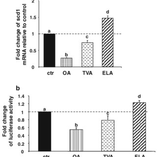 Expression of scd1 protein is regulated by C18:1 fatty