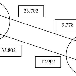 (PDF) European migration statistics: Definitions, data and