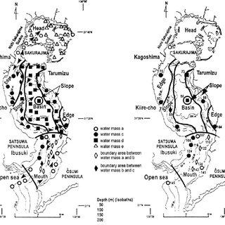 (PDF) Taxonomic units, civilization, volcanism: Their