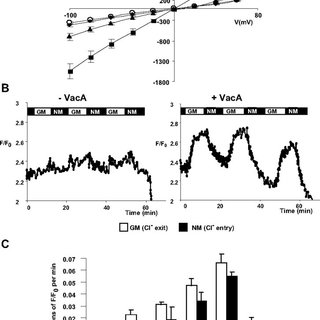 (PDF) Glycosylphosphatidylinositol-anchored Proteins and