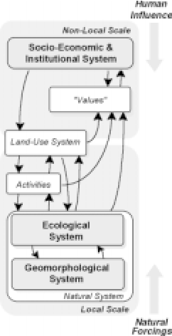 Uncertainty in integrated coastal zone management (PDF
