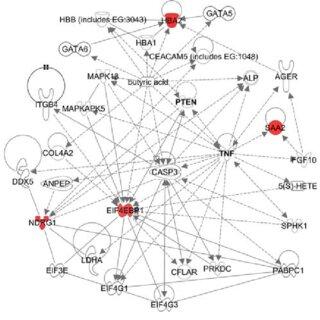 Btn1a1-gene expression network and quantitative trait