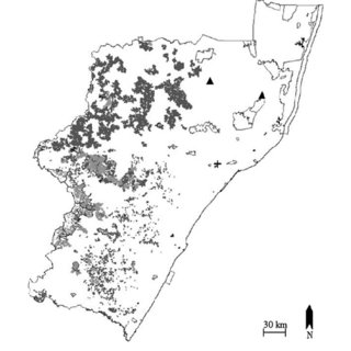 Provinces of South Africa—Gauteng (GP), KwaZulu-Natal (KZN