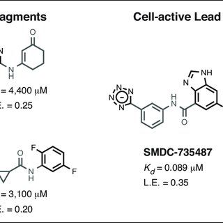 (PDF) UCSF Small Molecule Discovery Center: Innovation