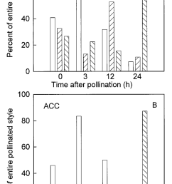 spatial production of a ethylene and b acc within pollinated styles styles were removed from the flower at 0 3 12 and 24 h after pollination  [ 850 x 1528 Pixel ]